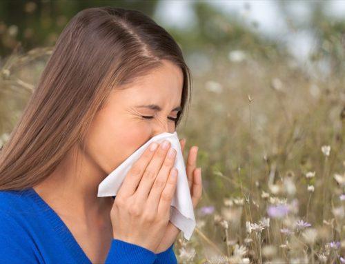 Αιθέριο έλαιο ρίγανης: Η φυσική λύση στις αλλεργίες